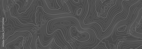 Obraz Gray topographic line contour map background, geographic grid map - fototapety do salonu