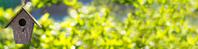 Bird House In Summer Sunshine & Green Leaves Panorama Web Banner