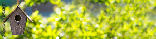 Bird House in Summer Sunshine & Green Leaves Panorama Web Banner Wallpaper Mural