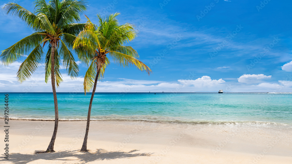 Fototapety, obrazy: Tropical sunny beach with coco palms and the turquoise sea on Jamaica Caribbean island.