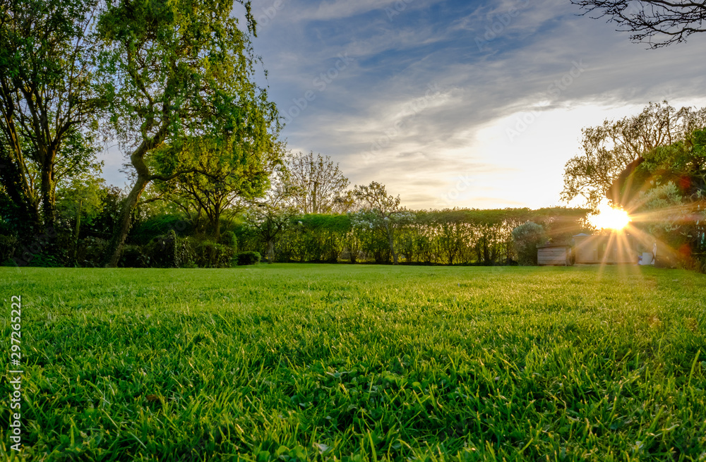 Fototapety, obrazy: Sunset view of a large, well maintained large garden seen in early summer, showing the distant sun about to set, producing a warm light just before dusk. The grass has recently been cut.