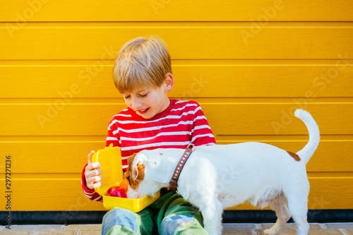 Boy feeding treats to his small puppy dog best friend Wallpaper Mural