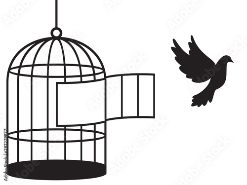Bird cage (free bird) Canvas Print