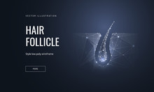 Hair Follicle Low Poly Landing Page Template