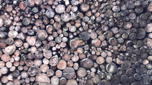 Firewood For Heating, Bonfires, Fireplaces. Background From Sawn Tree Trunks. Wood Texture. Village Blanks.