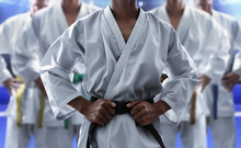 Karate Martial Arts Fighter In...