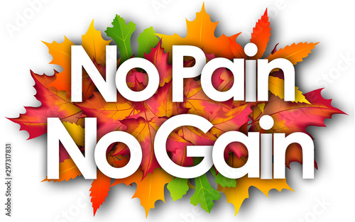 no pain no gain word and autumn leaves background Wallpaper Mural
