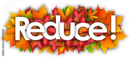 Obraz na plátně  Reduce word and autumn leaves background