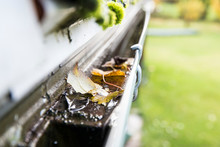 Rainwater Gutter Cleaning Concept. Clogged Rainwater Drainage System On Private Domestic Home House Roof Outdoors In Autumn. Autumn Chores Concept.
