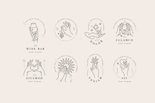 Vector Design Linear Template Logos Or Emblems - Hands In In Different Gestures. Abstract Symbol For Cosmetics And Packaging Or Beauty Products.