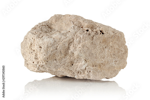 porous stone, a fragment of limestone - 297343860