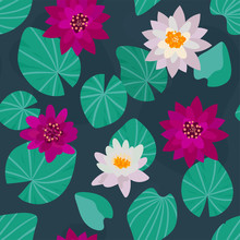 Flowering Water Lilies Seamless Pattern. Beautiful Floral Background With Water Plants In Hand-drawn Style. Wallpaper, Print, Texture In Oriental Style. White And Pink Lotus Flowers Top View. Vector.