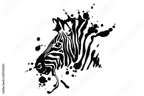 Fototapeta Zebra isolated on white background. Vector grunge illustration design template. obraz