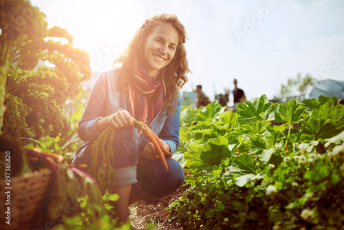 Friendly woman harvesting fresh vegetables from the rooftop gree Canvas