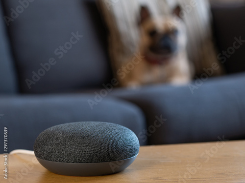 smart home voice activated speaker with pet in living room lounge Wallpaper Mural
