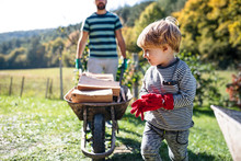Unrecognizable Father And Toddler Boy Outdoors In Summer, Carrying Firewood In Wheelbarrow.