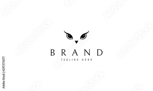 Photo Stands Owls cartoon Vector logo on which an abstract image of an owl eye.