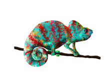 Chameleon Painted In Bright Co...