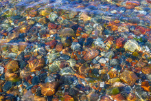 Colorful Pebbles Under The Water. Background Image, Texture.