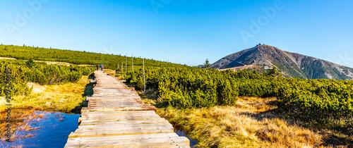 Fototapeta Wooden footpath leads to Snezka Mountain. Giant Mounatins, Krkonose National Park, Czech Republic obraz