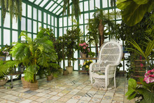 Refined Interior Of The Greenhouse..