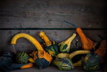 Variety Of Gourds And Pumpkins In Wooden Crates At Pumpkin Patch, Crookneck Winter Squash Varieties, Group Of Autumn Decorative Gourd, Fall Decorations, Copyspace, Copy Space