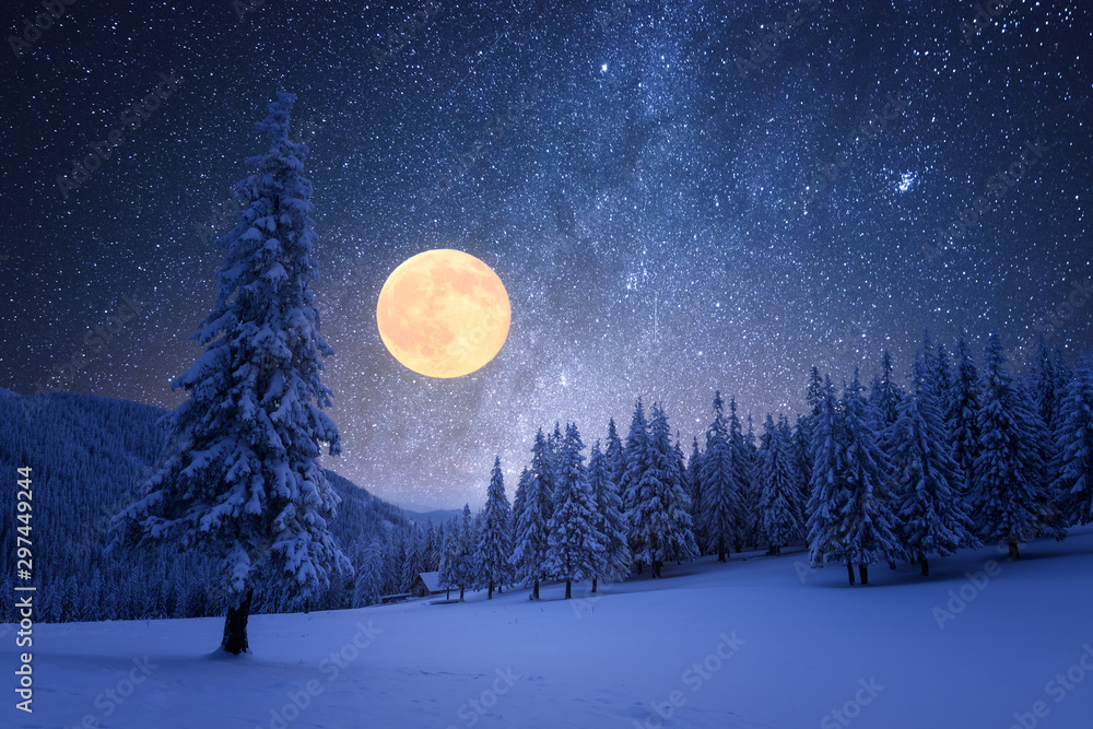 Fototapeta Winter night with starry sky and full moon