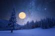 Leinwanddruck Bild - Winter night with starry sky and full moon