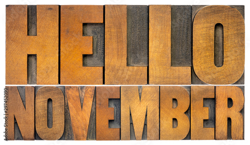 Hello November typography greeting card Wallpaper Mural