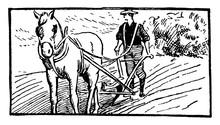 Plowing, Vintage Illustration