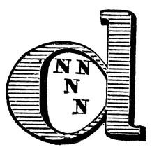 Decorative Letter D, Vintage Illustration