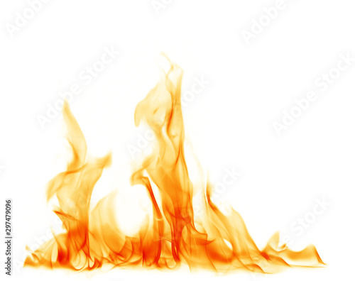 Fire flames on a white background. Fototapeta