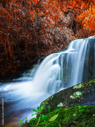 Foto auf AluDibond Grau Verkehrs Amazing in nature, beautiful waterfall at colorful autumn forest in fall season