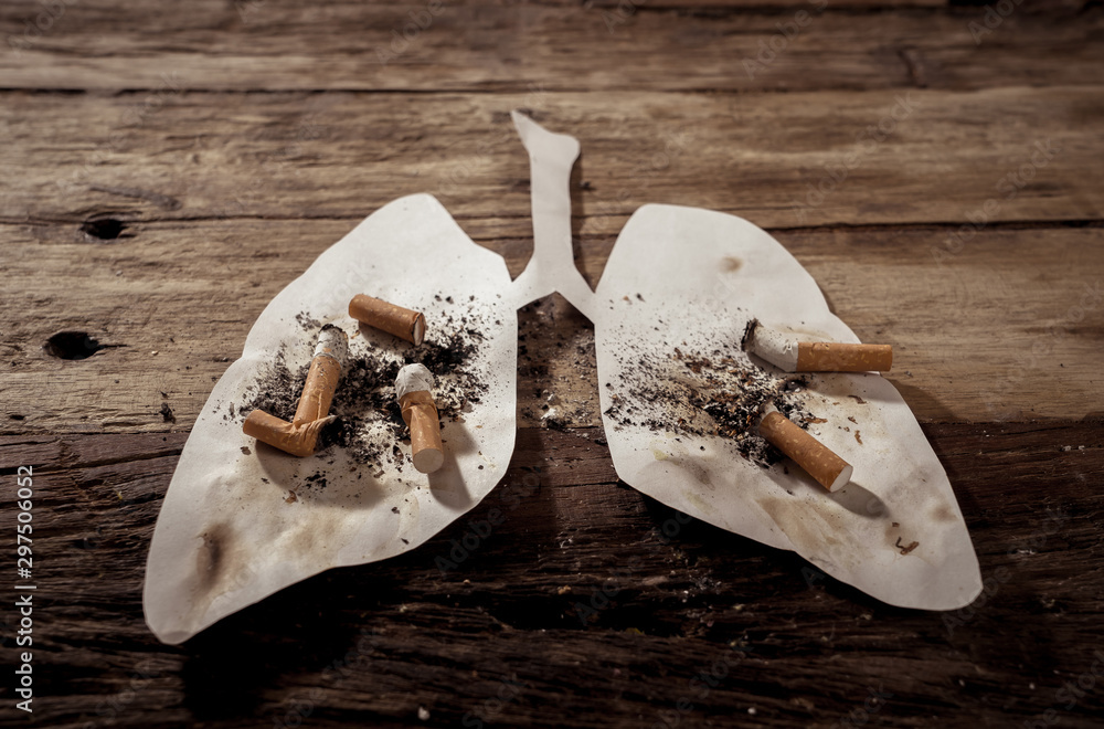 Fototapeta Smoking kills and lung cancer. Conceptual image of many cigarettes stubs and ash on paper lungs