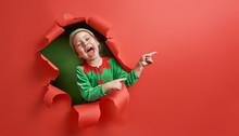 Santa's Elf On Bright Color Ba...