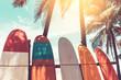 Leinwandbild Motiv Surfboard and palm tree on beach background.