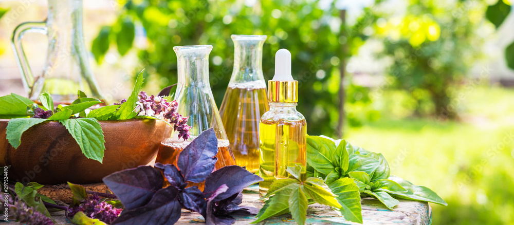 Fototapeta Oil for skin care, massage from natural ingredients, herbs, mint in glass jars and test tubes on a green background in the garden on the nature, natural cosmetics