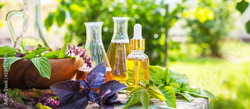 plakat Oil for skin care, massage from natural ingredients, herbs, mint in glass jars and test tubes on a green background in the garden on the nature, natural cosmetics