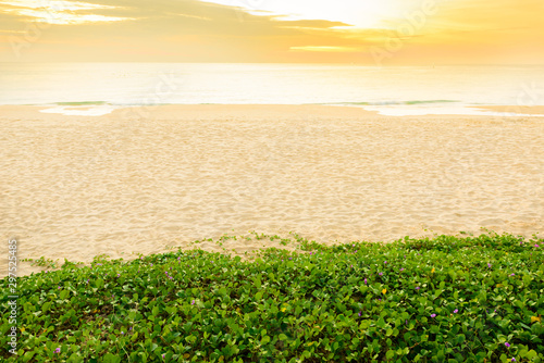 Fotografie, Tablou  Landscape view and  sand pattern on a beach and Beach Morning Glory at sunset time, Phuket, Thailand