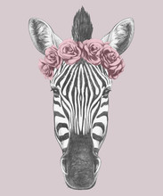 Portrait Of Zebra With Floral ...