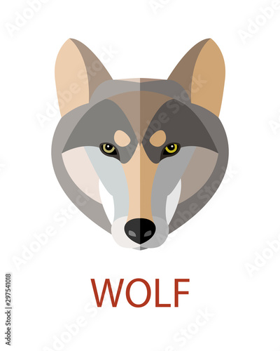 Fotografie, Obraz Vector illustration of a wolf face in flat art style.