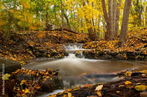 Pinturas sobre lienzo  Waterfall In Colorful Autumn Forest Landscape, Sweden