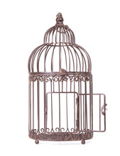 Empty Birdcage On White Backgr...