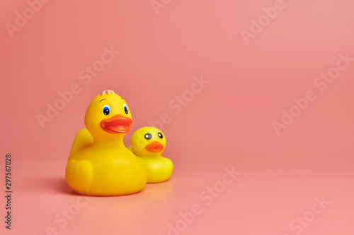 Fotografie, Obraz  Two yellow rubber ducks toys, copy space