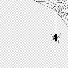 Spider Web Icon Mock Up Vector Illustration