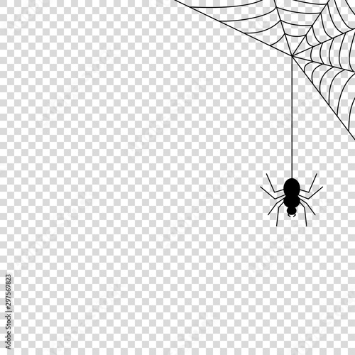 Photo  Spider web icon mock up vector illustration