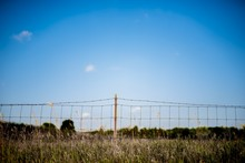 Grassy Field With Barb Wire Fe...