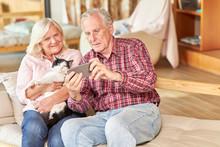 Senioren Paar Mit Katze Macht ...