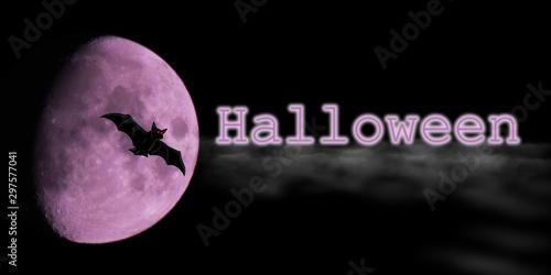 notte stregata con ombra di pipistrello contro una luna di colore rosa nella neb Canvas Print