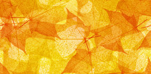 Maple Tree Orange And Gold Leaves Seamles Background